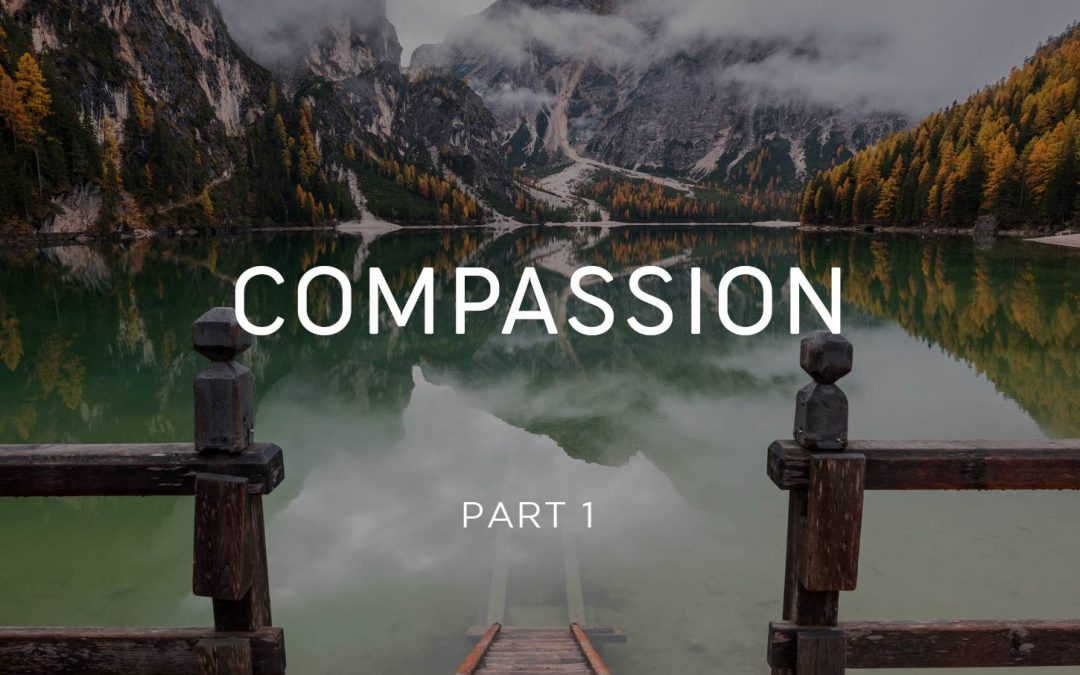 Compassion - Monks Part 1