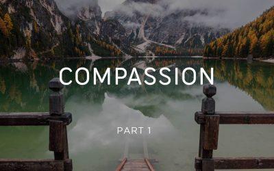 Compassion - Monks Part 1